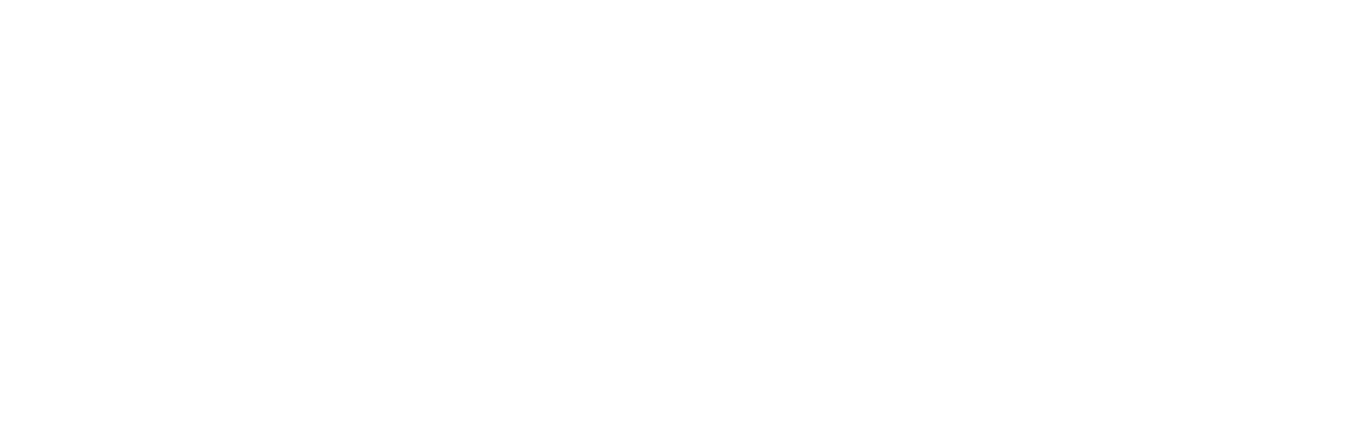 Silicon Valley Partners